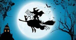 Cadılar ve Kediler